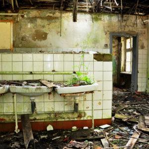 Eine Sanitäranlage, fotografiert in einer Ruine einer ehemaligen DDR Kaserne. Ein besonderer Lost Place mit Wildwuchs im zerfallenen Waschbecken.