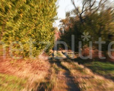 Feldweg 1